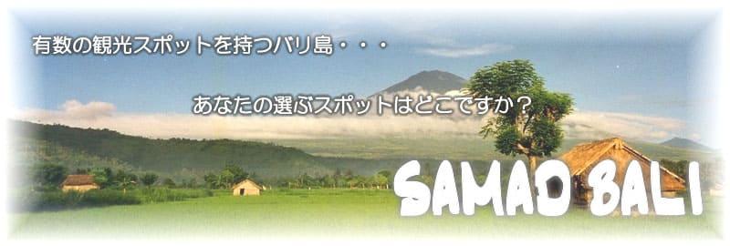 バリ島カーチャーターならSAMAD BALI